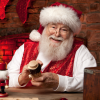 Santa's Workshops & Holiday Camps are now FULL
